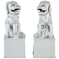 Blanc de Chine Foo Dogs