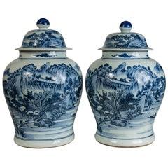 Blue and White Porcelain Ginger Jars