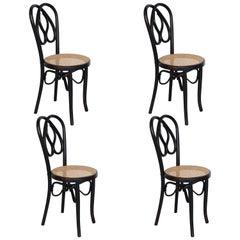 Set of Four Ventura Feliu Chairs Nº41