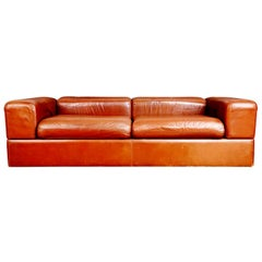 Tito Agnoli Leather Sofa and Convertible Bed for Stendig, Italy