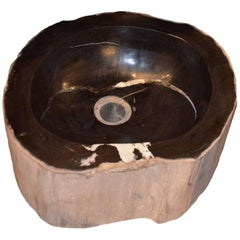 Andrianna Shamaris Petrified Wood Sink