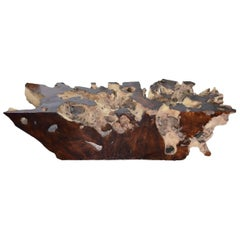 Andrianna Shamaris Organic Teak Wood Root Coffee Table