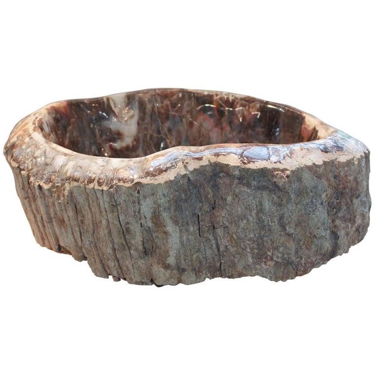 Petrified Wood Bowl from Madagascar