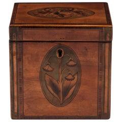 Antique Georgian Satinwood Single Tea Caddy