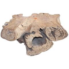 Sculpted Teak Root Wood Coffee Table