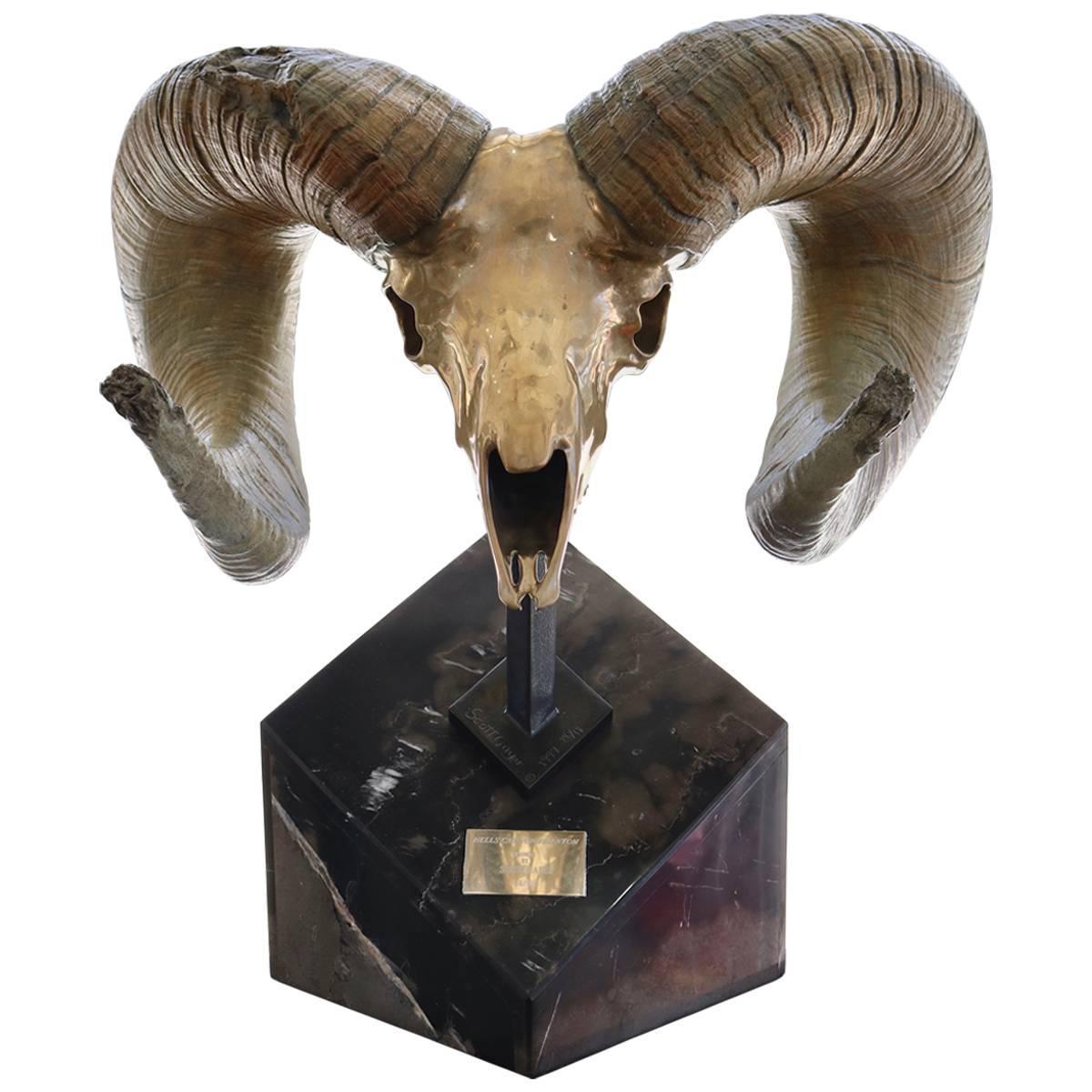 Bronze Sculpture of a Rams Head Skull