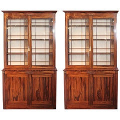 Pair of Fine Period Regency Rosewood Cabinets with Bronze Details