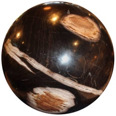 Extra Large Petrified Wood Sphere