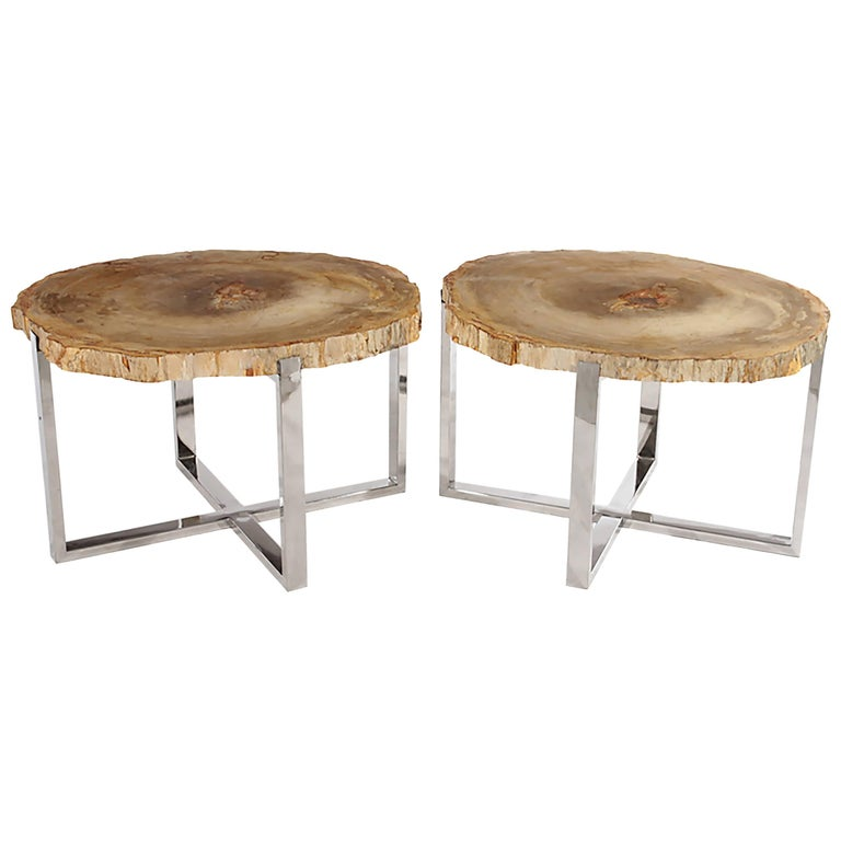 Pair of Petrified Wood Side Tables on Chrome Bases 1