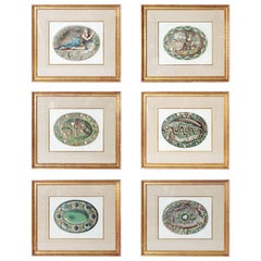Hand-Colored Palissy Ware Lithographs / Set of Six by Rose-Joseph Lemercier
