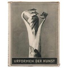"""Karl Blossfeldt """"Urformen Der Kunst"""" 1941 Book"""
