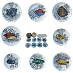 Set of Bucciarelli Milano Sea Shell Ceramic Coasters