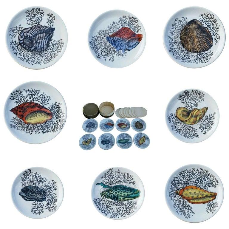Set of Bucciarelli Milano Sea Shell Ceramic Coasters