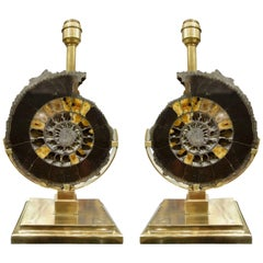Pair of Dark Charcoal Gray and Gold Polished Ammonite Table Lamps on Brass Bases