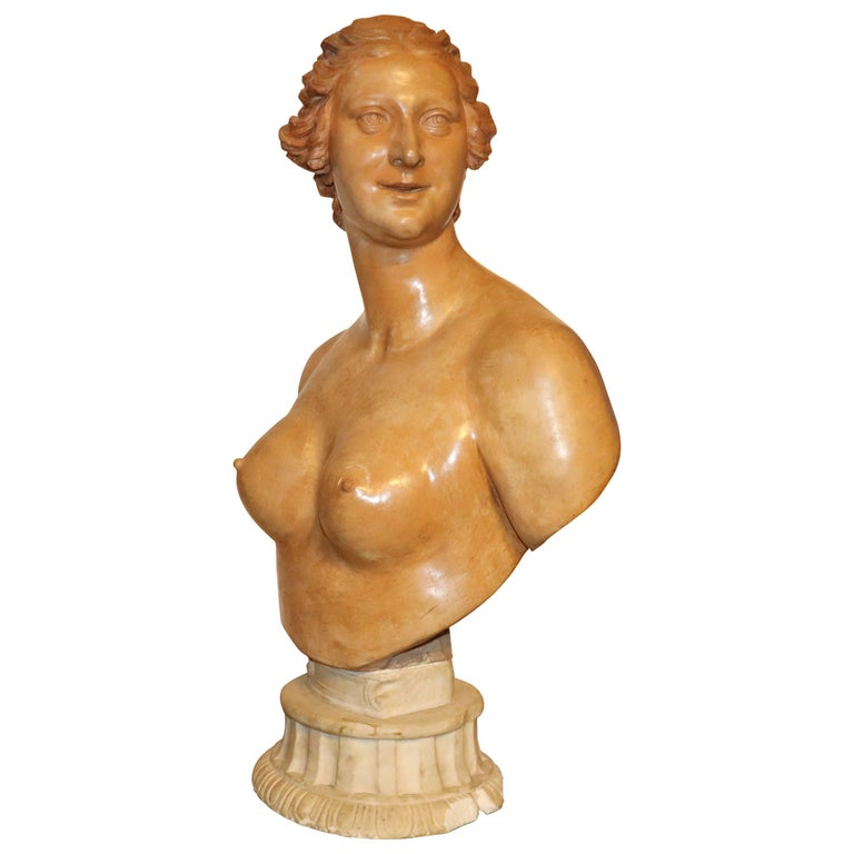 Middle of 18th Century, French Terracotta Bust