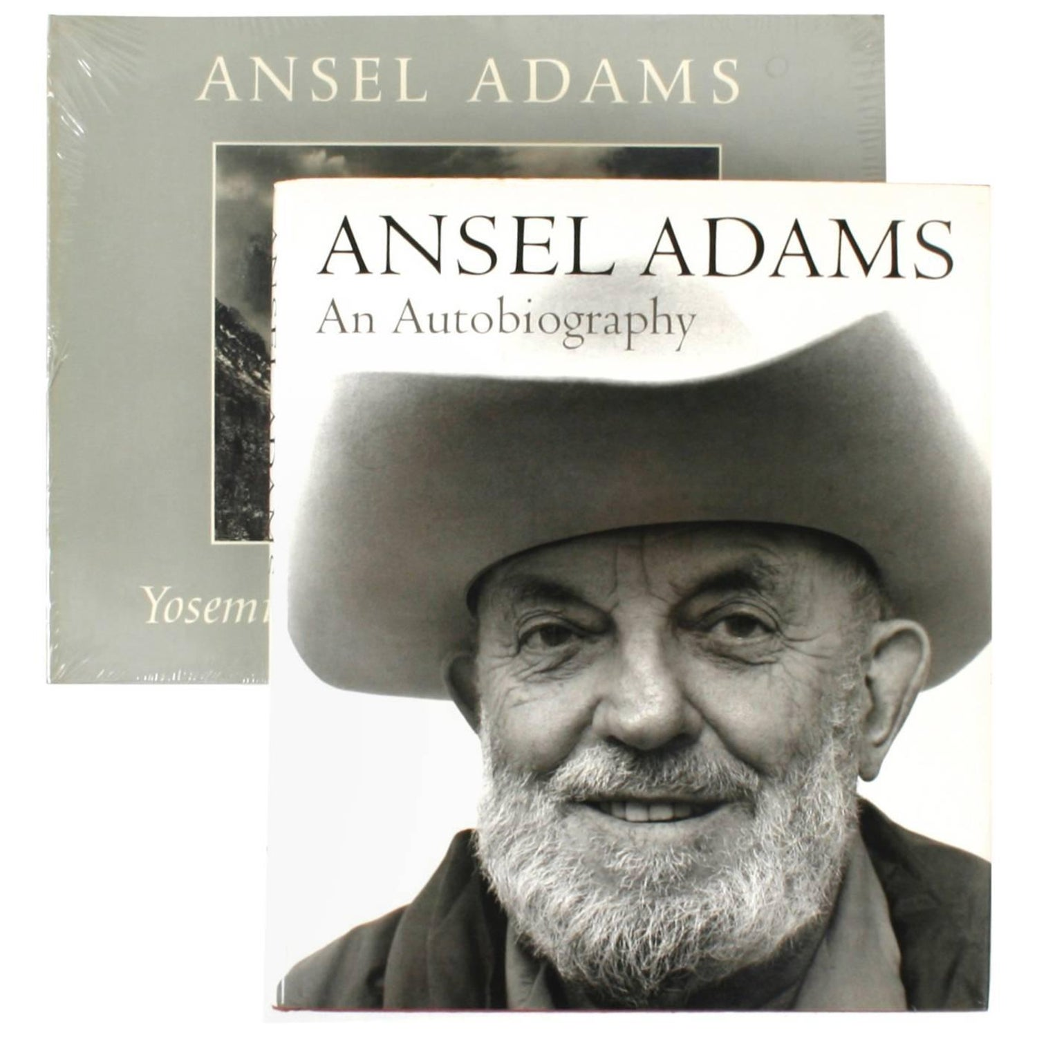 Pair of Books on Ansel Adams First Edition For Sale at 1stdibs