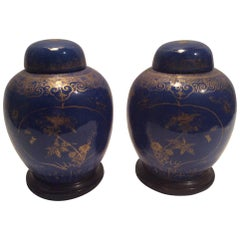 Pair of Qing Dynasty Ginger Jars