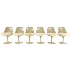 Eero Saarinen Tulip Chairs with Custom Brazilian Sheepskin Cushions, Set of Six
