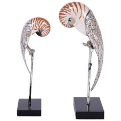 Two Mid-Century Nautllus Shell Parrot Sculptures