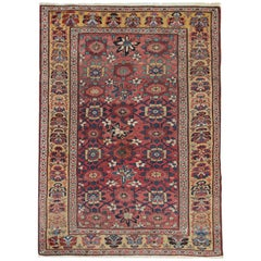 Antique Rugs, Persian Carpet, Living Room Rugs from Bijar