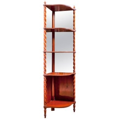 Corner Étagère in Mahogany with Mirrored Back Panels, Denmark, circa 1835