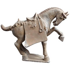 Handsome Prancing Horse, Tang Dynasty 'AD 618-AD 907'