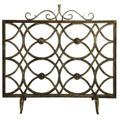 For Sale on 1stdibs - Elegant fireplace screen made of wrought Iron. Florida Everglades plants put together by the artist