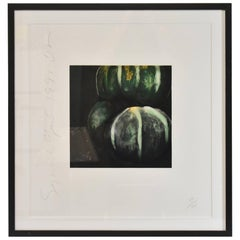 "Donald Sultan Print, ""Squash' Signed and Numbered 59/125, 1991"