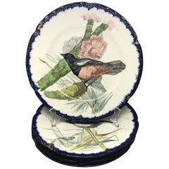 Set of Seven French Bird Plates