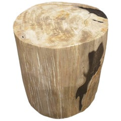 Petrified Wood Tables 187 For Sale at 1stdibs