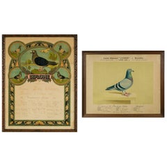 Set of Two Vintage Framed Pigeon Racing Certificates from Belgium, 1926 & 1931