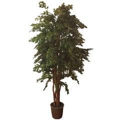 Very Tall Life like Silk Faux Ficus Tree