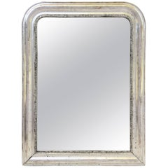 Louis Philippe Silver Gilt Mirror (H 29 3/4 x W 22 1/2)