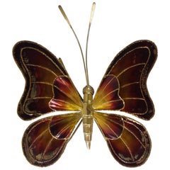 Large Belgian Brass Butterfly Sconce