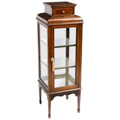 19th Century Edwardian Square Vitrine Display Cabinet