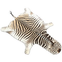 Zebra Rug, Offered by Area ID