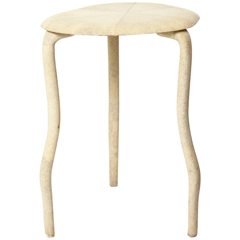 R U0026amp; Y Augousti Shagreen Table