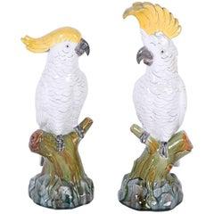 Amusing Pair of Glazed Terra Cotta Cockatoo Birds