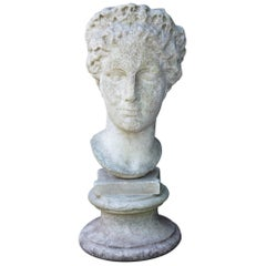 Italian 19th Century Carved Marble Bust after the Antique