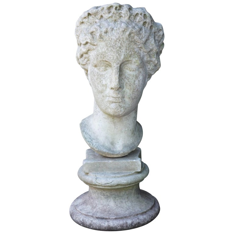 Italian 19th Century Carved Marble Bust after the Antique 1