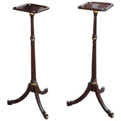 Pair of Period George III Carved and Gilded Mahogany Plant or Candle Stands