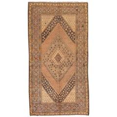 Early 19th Century Beige/Brown Turkestan Khotan Rug