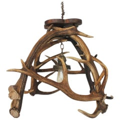 Early 20th Century Stag's Horn Chandelier