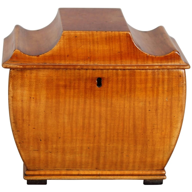19th Century Biedermeier Tea-Caddy