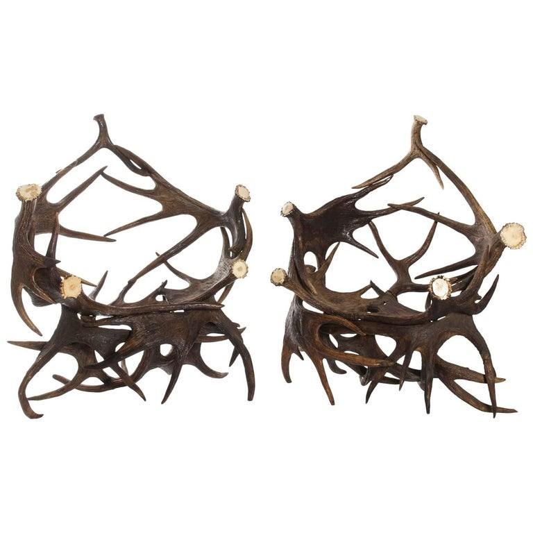 Pair of Antlers Lounge Chairs