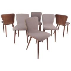 Set of Six Contemporary Modern Dining Chairs