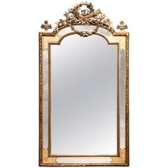 19th Century, French Louis XVI Carved Silverleaf and Goldleaf Parclose Mirror