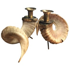 Large Horns Candlestick Holders with Brass