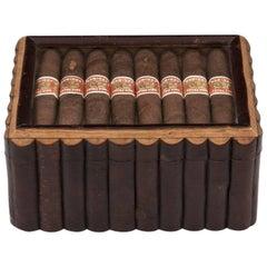 Birch Wood Glazed Cigar Humidor Box with Maple Lined Interior, 20th Century