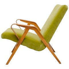 Tatra Bent Plywood Lounge Chair in Lime Velvet